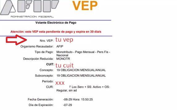 Como generar un VEP