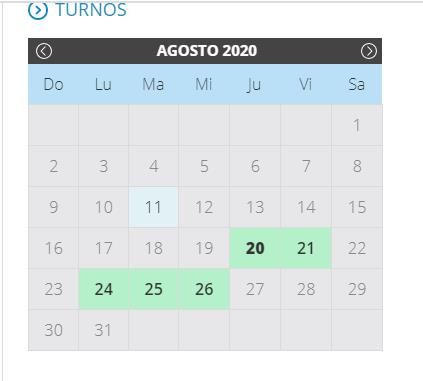 Seleccioná una fecha en el calendario TURNO WEB AFIP