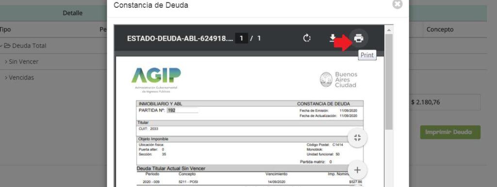 AGIP abl boletas con ejemplo pdf